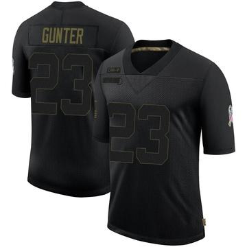 Youth Nike Carolina Panthers LaDarius Gunter Black 2020 Salute To Service Jersey - Limited