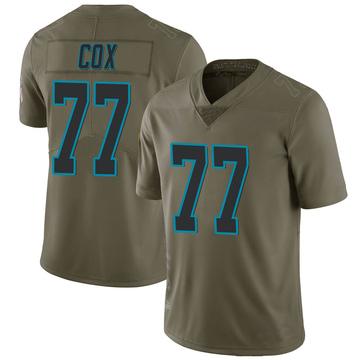 Youth Nike Carolina Panthers Rakim Cox Green 2017 Salute to Service Jersey - Limited