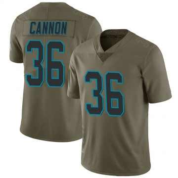 Youth Nike Carolina Panthers Trenton Cannon Green 2017 Salute to Service Jersey - Limited